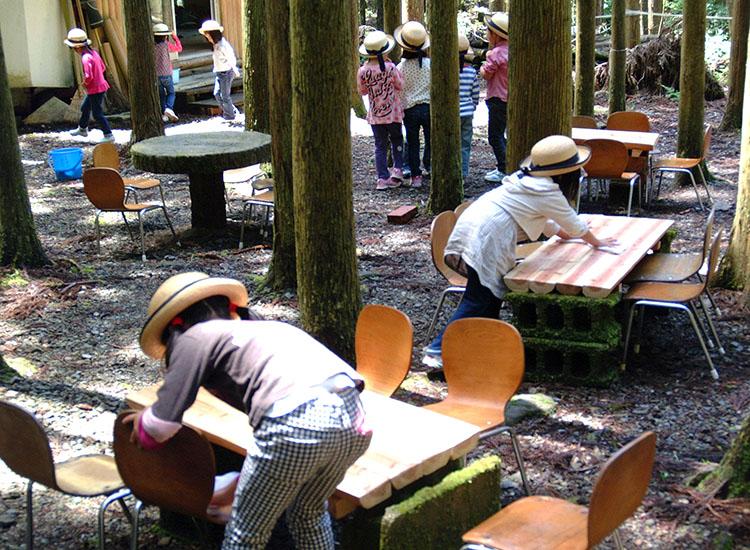 観察林保育