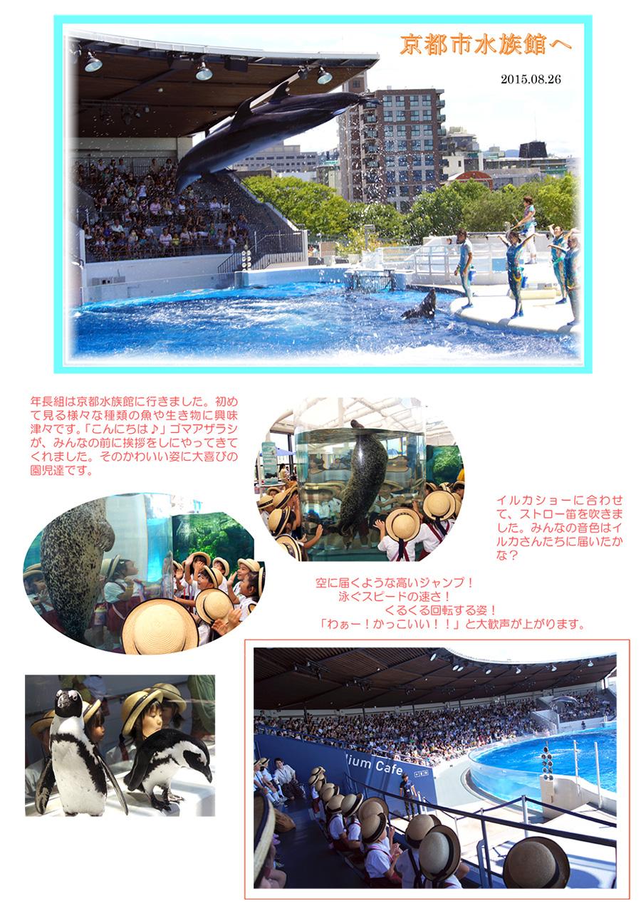 年長組は水族館に行ってきました。